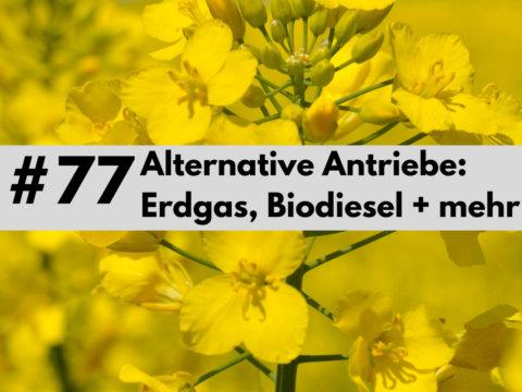 Alternative Antriebe Erdgas Biodiesel